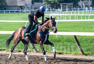 Saratoga_training-9249_August_06_2018_NAT_WHITE