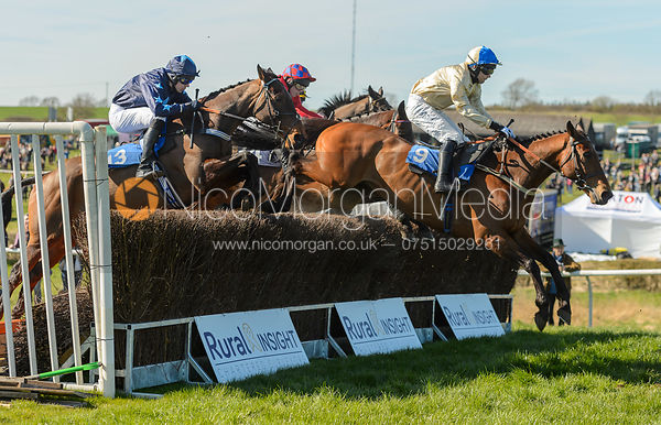HAZEL HILL (Alex Edwards) - Race 4 Mixed Open - The Belvoir Point-to-point 2017