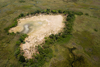 Aerial landscape photograph of the Okavango Delta swamp in Botswana,