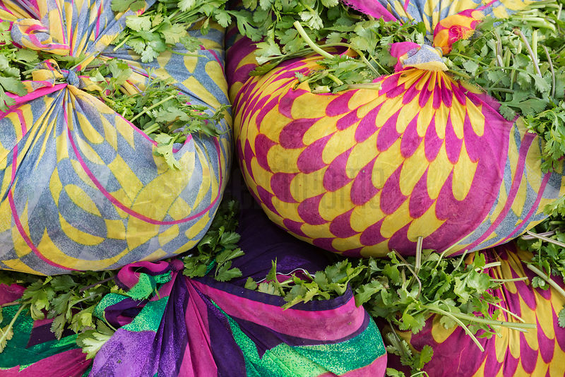 Bundles of Coriander Tied Up in Old Saris