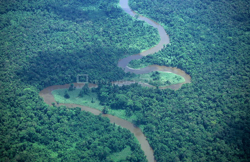 Aerial view of the rainforest and the Asmat land, Western Papuasia, Indonesia.