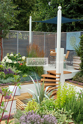 Aromatic plant, Border, Border with flowers, Condiment, garden designer, Pergola, Small garden, Stair, Terrace, tight cloth, Trellis, Urban garden, Contemporary Terrace, Digital, Grasses