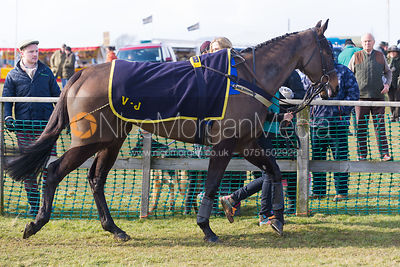 Race 3 (Intermediate) - The Belvoir at Garthorpe 30th March 2013.
