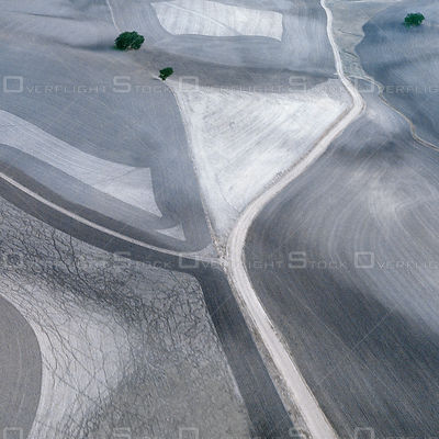 Plowed fIeld on rolling hills with tree near Paso Robles, California