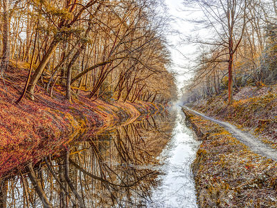 Canal through a forest