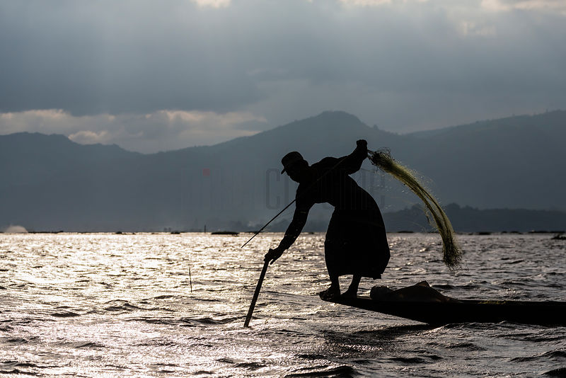 Fisherman setting his Nets on Inle Lake