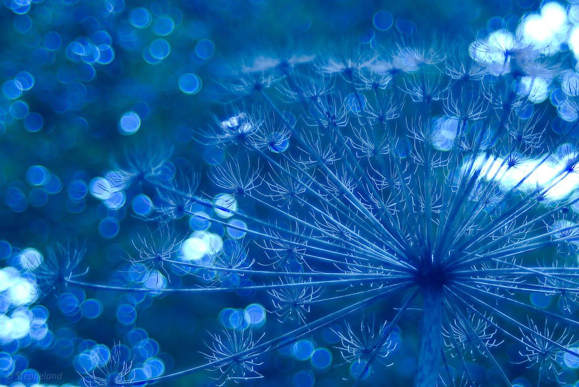 Sparkling blue imagination