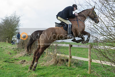 Vere Phillipps jumping a hedge at Ingarsby
