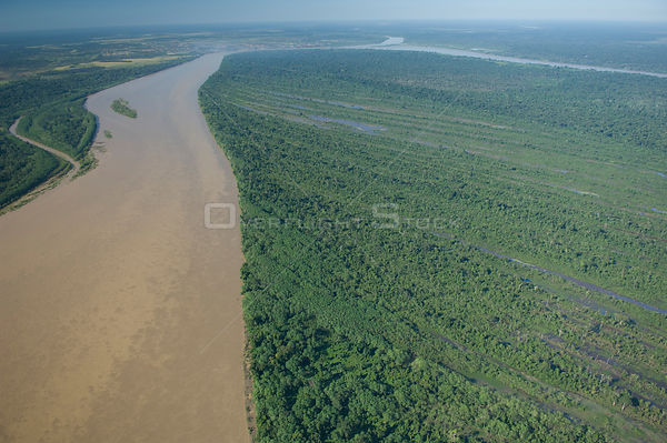 "Aerial view of amazon ""várzea"" flooded forest along the Beni River near Riberalta town, Beni Department, Northeastern Bolivia."
