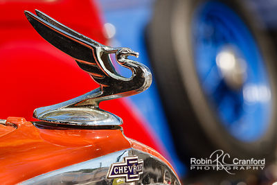 Art Deco Sunday 2014.  Hood ornament on a 1933 Chevrolet Eagle.  License Plate 33CHEV