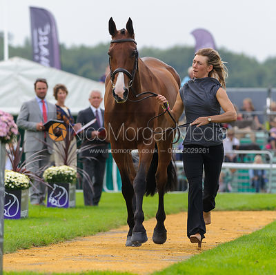 Louisa Lockwood and BALLYFARRIS FLIGHT - The first vets inspection (trot up),  Land Rover Burghley Horse Trials, 3rd Septembe...