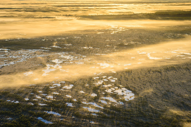 Aerial view of foggy bog pools at sunrise. Ida-Virumaa, Estonia, May.