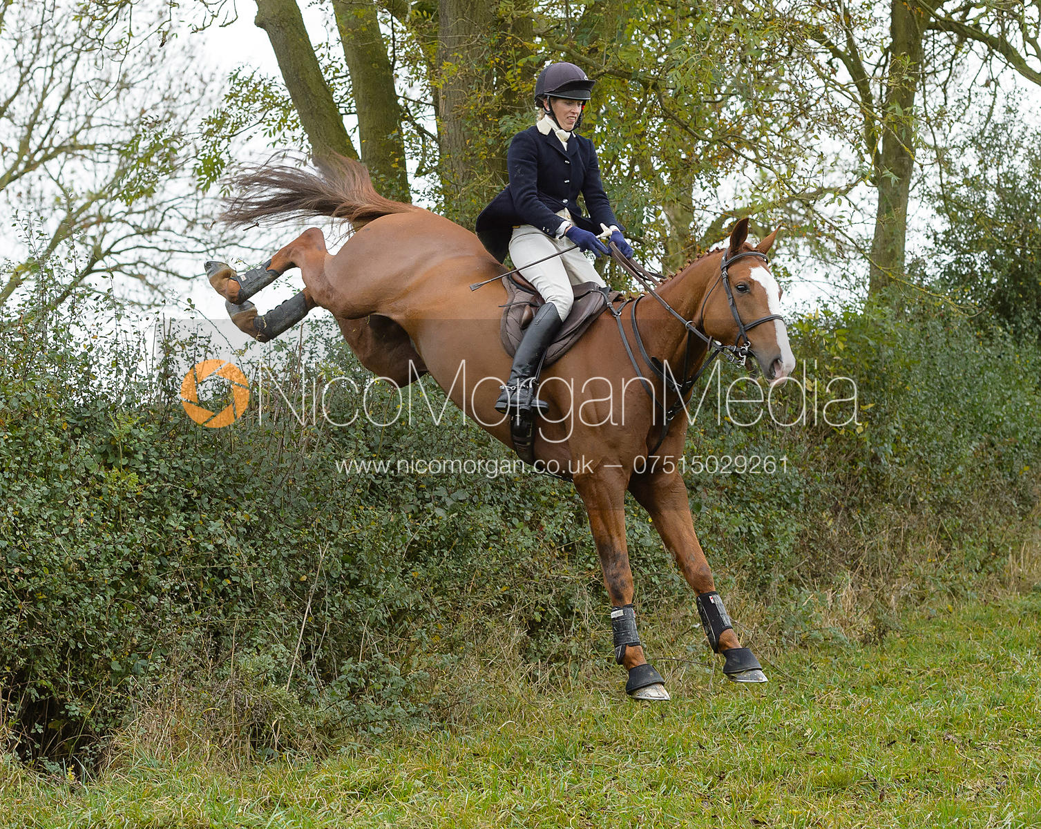 Katie Barber jumping a hedge on David Johnson's - Quorn Hunt Opening Meet 20/3
