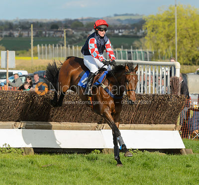 Race 7 Maiden - The Atherstone Point-to-point 2017