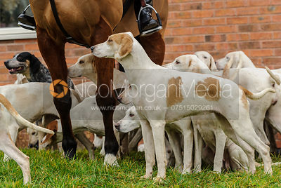 Followers at the meet - The Quorn Hunt at Twyford 13-12