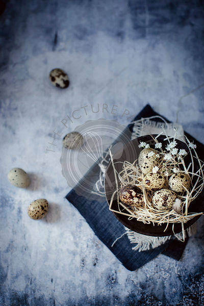 Fresh organic quail eggs in a bowl on vintage background