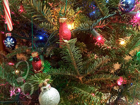Christmas Tree Closeup