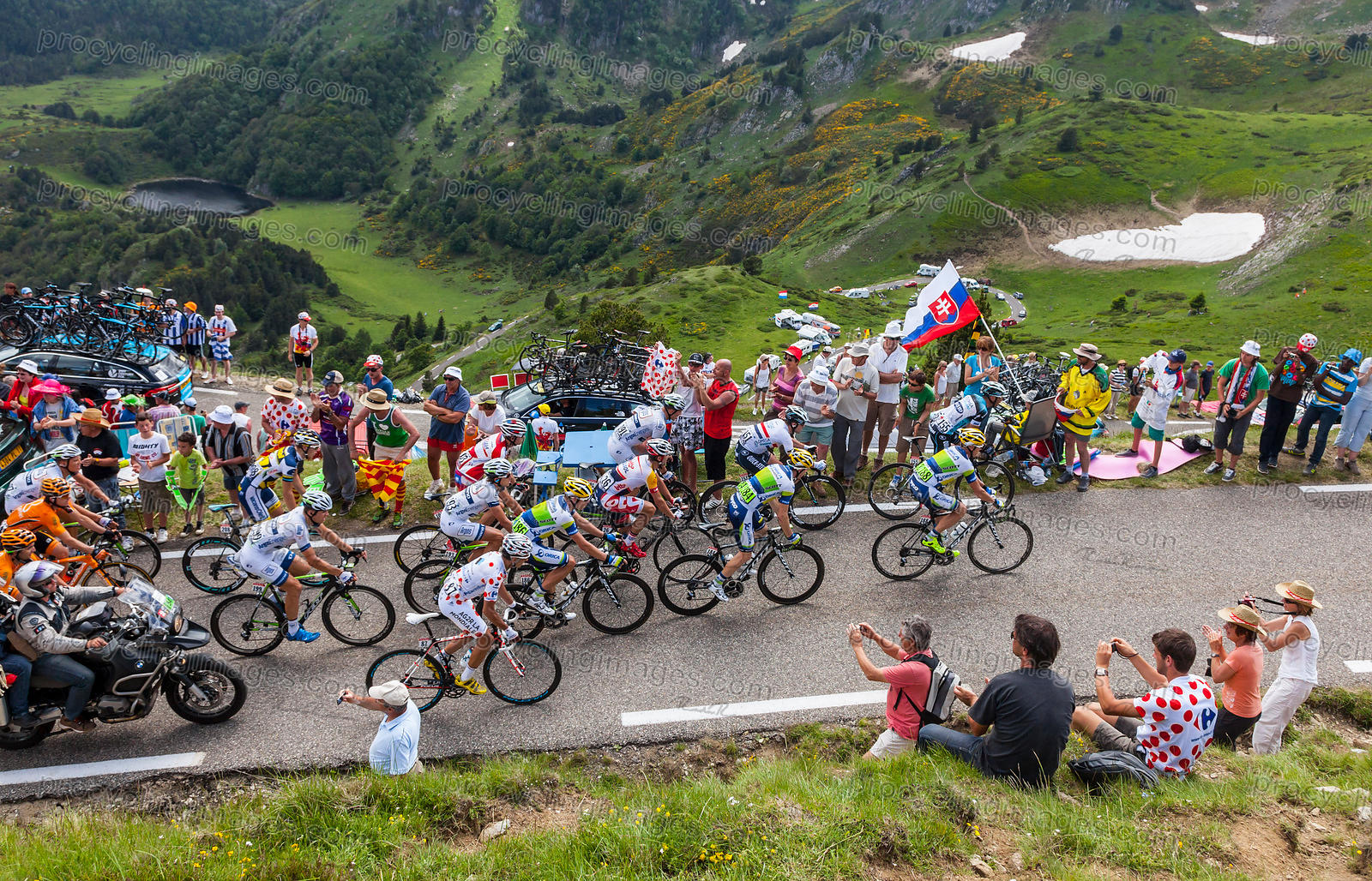 The Peloton in Pyrenees - Tour de France 2013