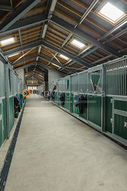 Indoor stables or stalls for horses