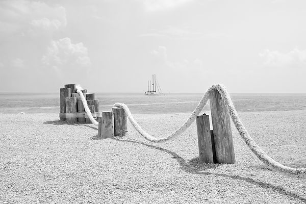BEACH IN UPPER MATECUMBE KEY ISLAMORADA FLORIDA KEYS BLACK AND WHITE