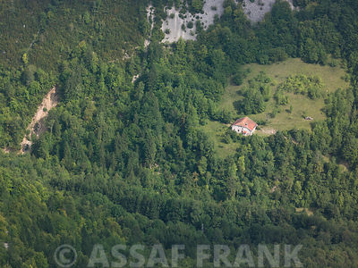 France, Arial view of forest