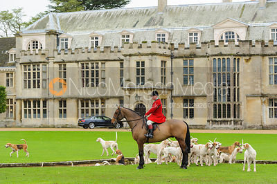 George Adams with the hounds in front of Milton Hall - Fitzwilliam Opening Meet, Milton Park 6-11-13