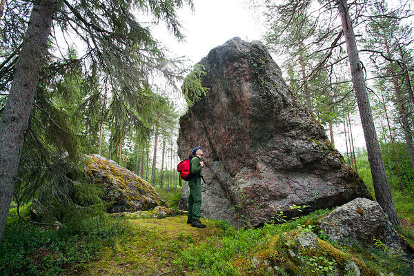 Väätäjäniemi Glacial erratic is one of the Rokua Geopark geological sites