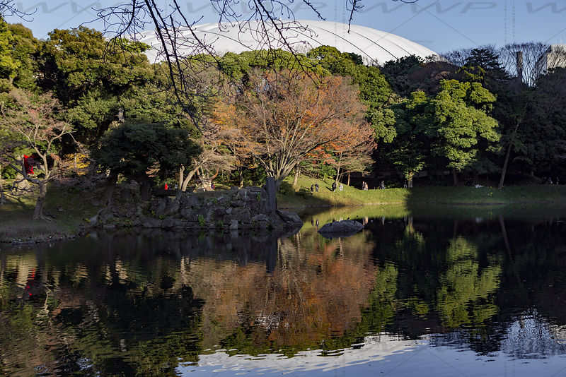_W_P324-Tokyo-park-pond-Dome-reflection