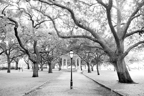 WHITE POINT GARDEN CHARLESTON SOUTH CAROLINA BLACK AND WHITE