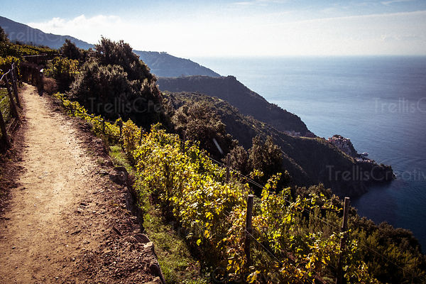 Hiking path near the town of Volastra in Cinque Terre.