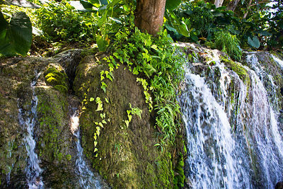 Cascade à Morant Bay, Jamaique / Waterfall in Morant Bay, Jamaica