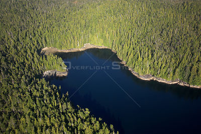 Aerial view of The Great Bear Rainforest, British Columbia, Canada