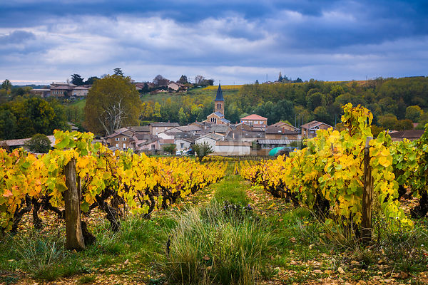 Village de Saint Julien en automne, Beaujolais