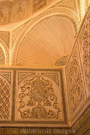 Some superb stucco work from inside the Mosque of the Barber complex. Kairouan, Tunisia; Portrait