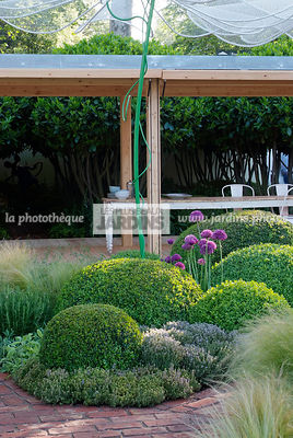 Ball shaped, Buxus, Contemporary furniture, Contemporary garden, Digital, Garden construction, Garden table, Pergola, Sphere ...