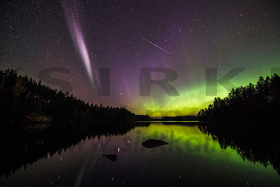 Northern Lights in Isojärvi National Park