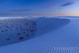 Sand Curve | White Sands, NM