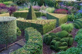 Geometrically shaped topiary