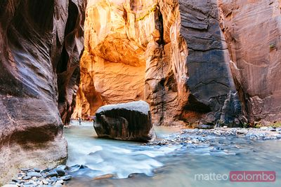 The Narrows, Zion Canyon National Park, Stati Uniti