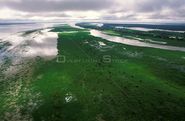 Amazon river flooded in rainy season, Amazon, Brazil, 1994.