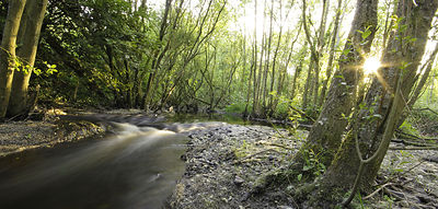 Dodder_river_long_exposure