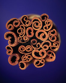 Cinnamon Bunch