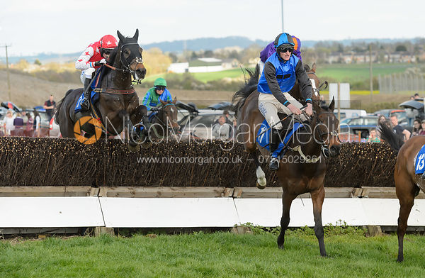 Race 6 Restricted - The Atherstone Point-to-point 2017