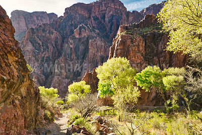 Trail To The Colorado From Phantom Ranch, Grand Canyon