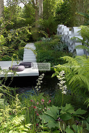 Contemporary garden, Digital, Tropical garden, Contemporary Terrace