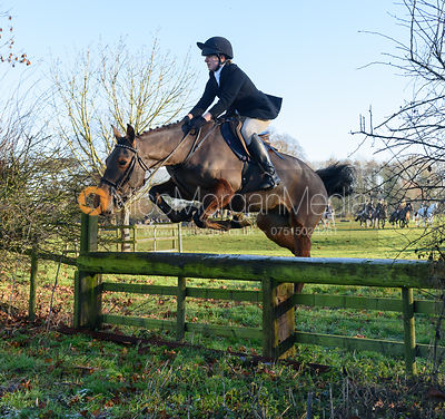 Lucy Butler jumping a hunt jump away from the meet - The Cottesmore Hunt at Pickwell Manor 28/12