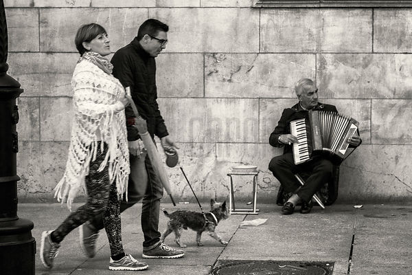 A Couple Walking Past Man Playing an Accordion