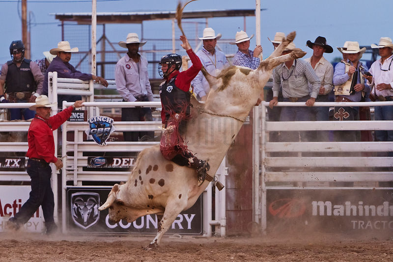 Bull Riders at Rodeo