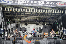 Teddy Rocks 2017