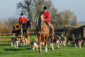 John Holliday and the Belvoir hounds